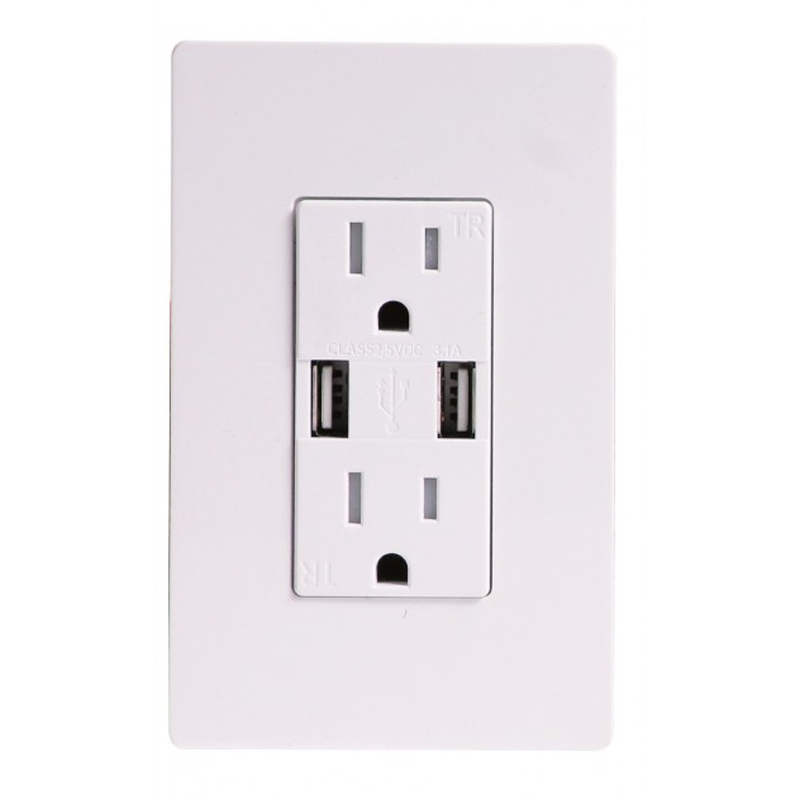Switches and Receptacles (Plugs)